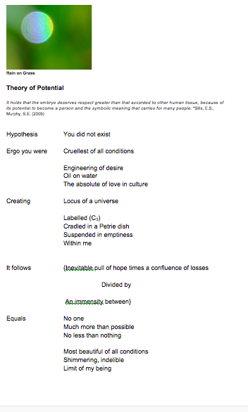 Theory of Potential Blog