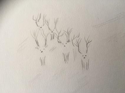 Reindeer sketch