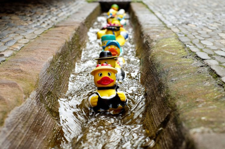 bath-ducks-blur-colorful-106144